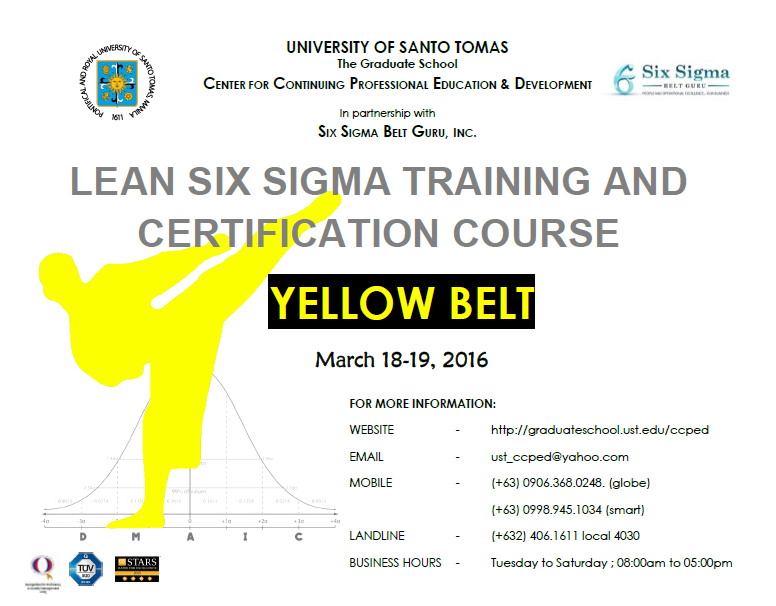 POSTER - Yellow Belt Mar 2016
